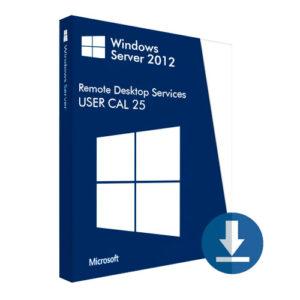 Windows Server 2012 User CAL 25